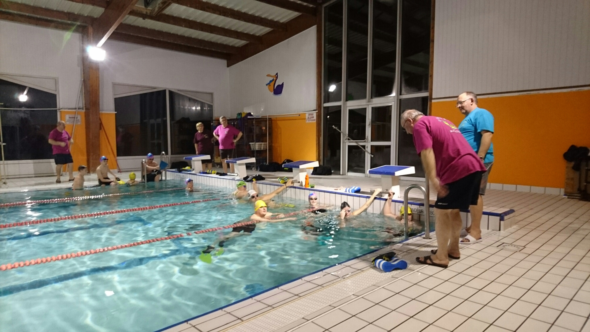 f vrier 2016 leforest natation club