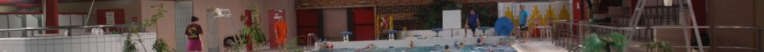 Leforest natation club